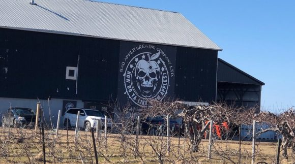 This is a photo of Bad Apple Brewing Co. Get a $2 craft beer here with Craft Beer Passport app.